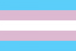 LGBTIQ Gender Identity Pride Flag - Transgender