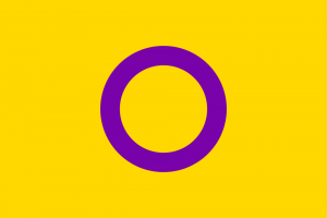 LGBTIQ Sex & Gender Pride Flag - Intersex (OII)