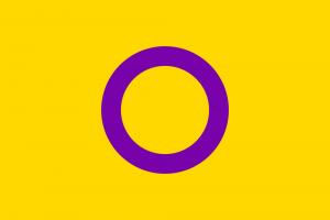 LGBTIQ Sex & Gender Pride Flag - Intersex (OII)
