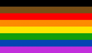 Black Brown 8 Color PoC Rainbow Pride Flag